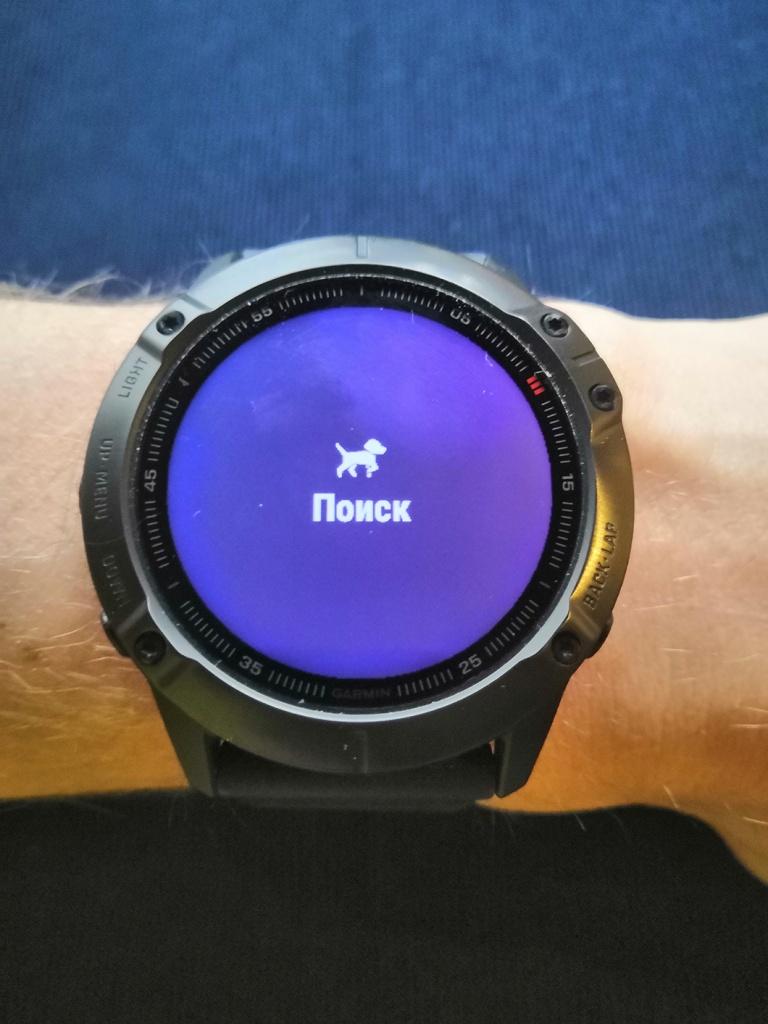 умные часы Fenix 6